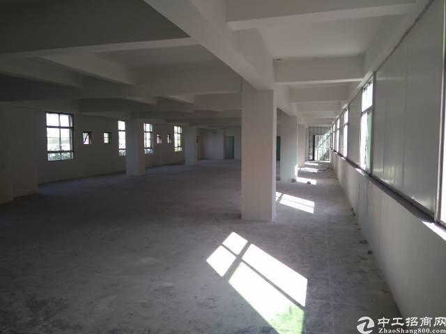 惠州新出标准厂房500平米,原房东现房-图3
