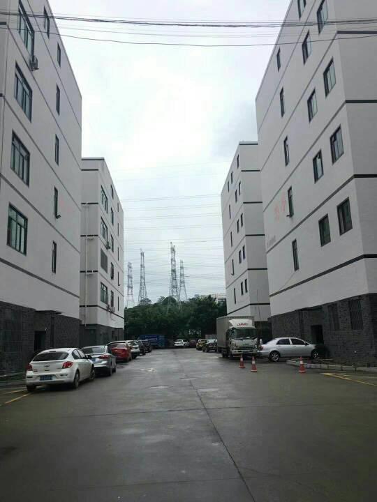 龙华创新园新出整层1600平拎包入住