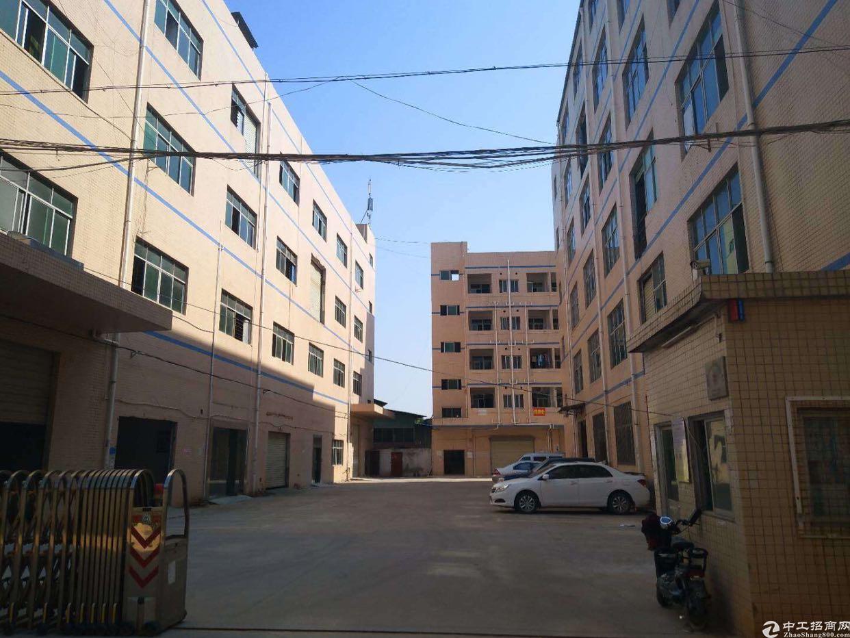 公明楼村公常路边业主出租楼上2000平米电子厂房18元全包