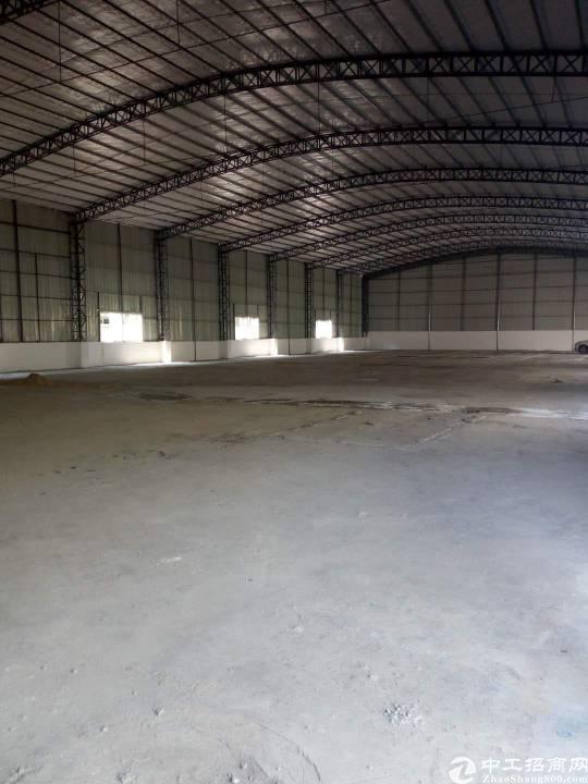 望牛墩工业园区钢构滴水8米,4300平米租16