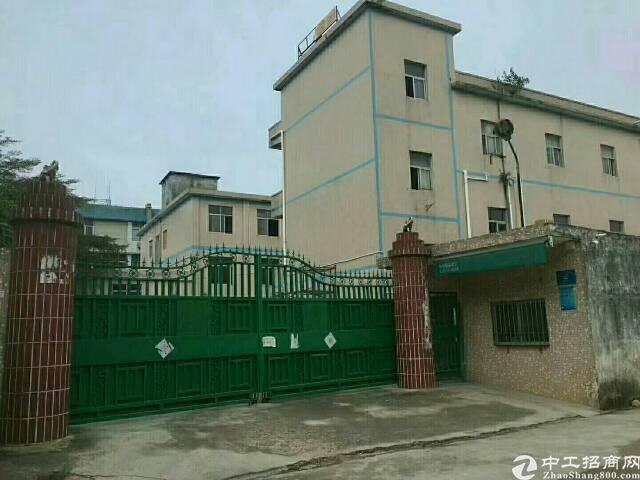惠州仲恺独院标准厂房9800平方招租