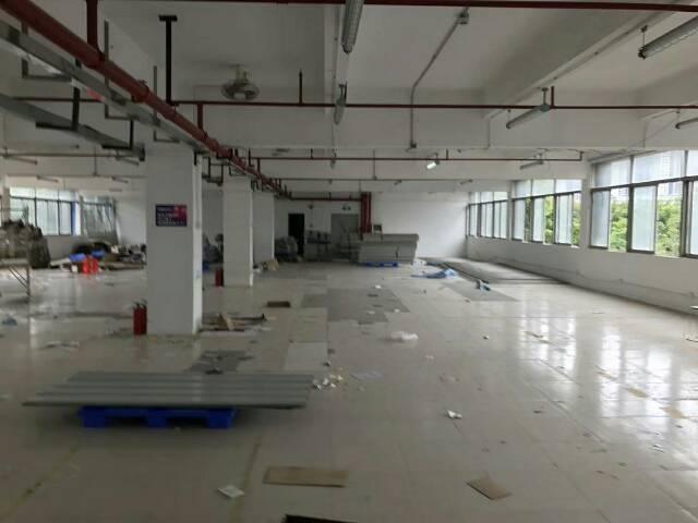 布吉丹竹头新出一楼厂房980平现成装修