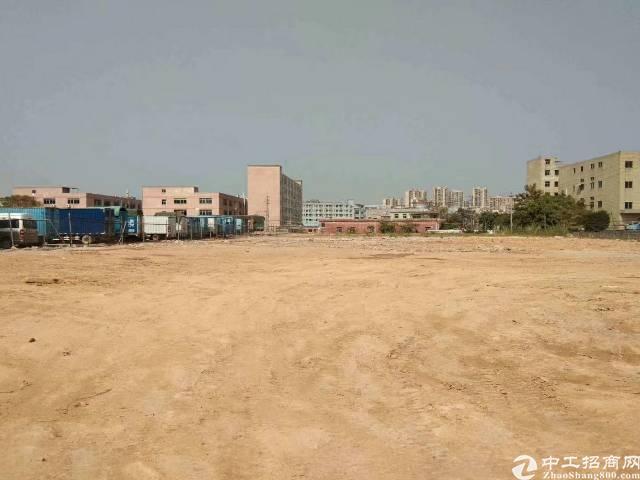 沙井空地出租10000平方已平整非常漂亮只要没污染的行业都可