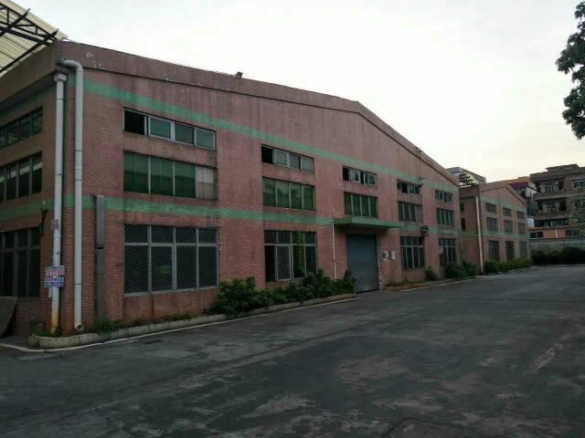 东莞市高埗镇全新钢结构厂房出租