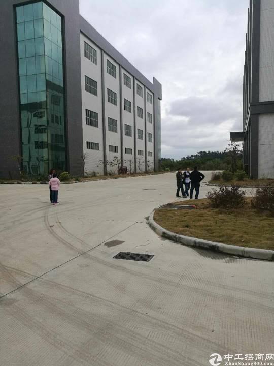 广州白云机场标准仓库出租