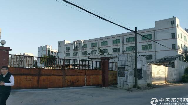 光明新区公常路边红本厂房急售。适合旧改。