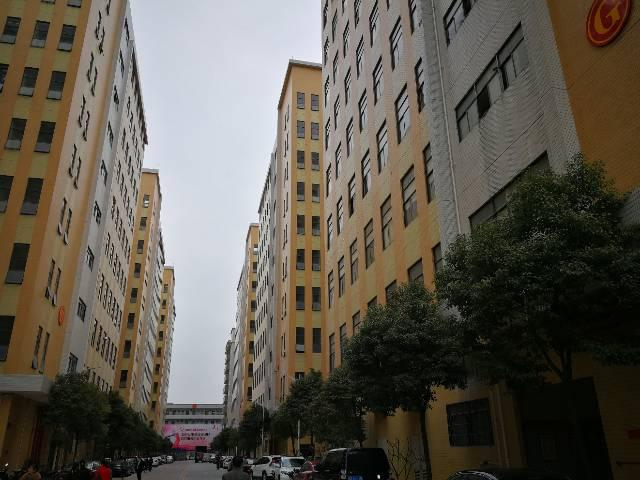公明高新园区楼上3466平方豪华装修出租