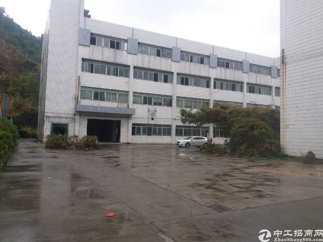虎门镇大宁村独院厂房出租厂房面积10000平方
