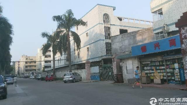 龙岗中心城同乐吓坑红本厂房出售。位置优越。适合自用与投资。-图4