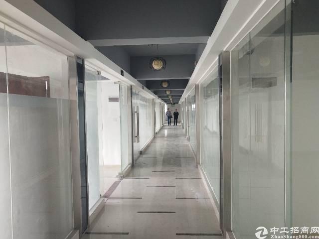 沙井 精装修 写字楼 出租,大小分租,68-1000平米
