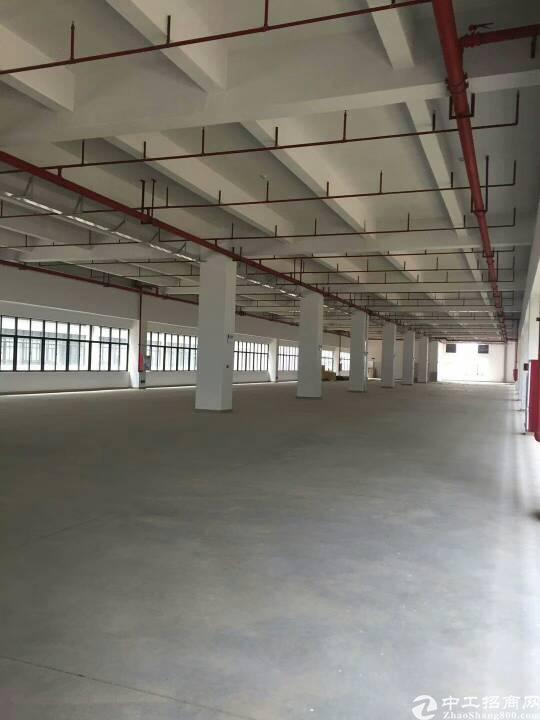 大岭山原房东大型工业园启动独门独院厂房出租
