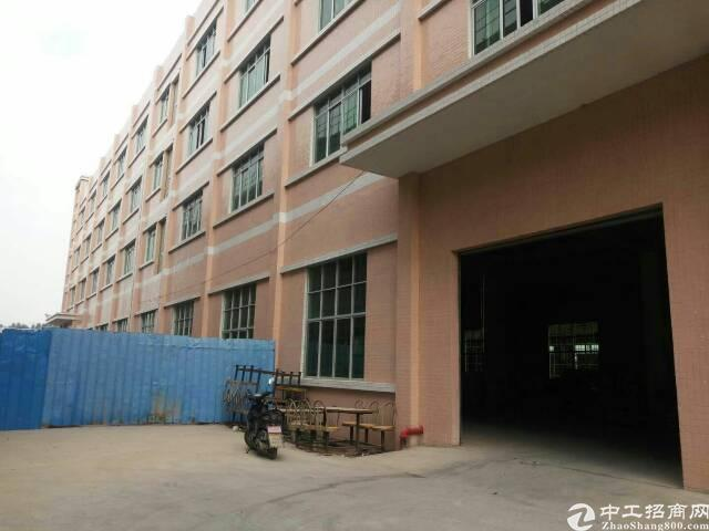 园洲新出楼上厂房面积4000平米