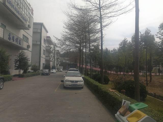 水田花园式标准厂房12000平米