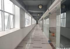 沙井西环路精装修写字楼出租,50-500平米,大小分租