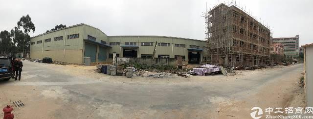 茶山镇全新精品钢构小独院10米高共5400平方米厂房招租