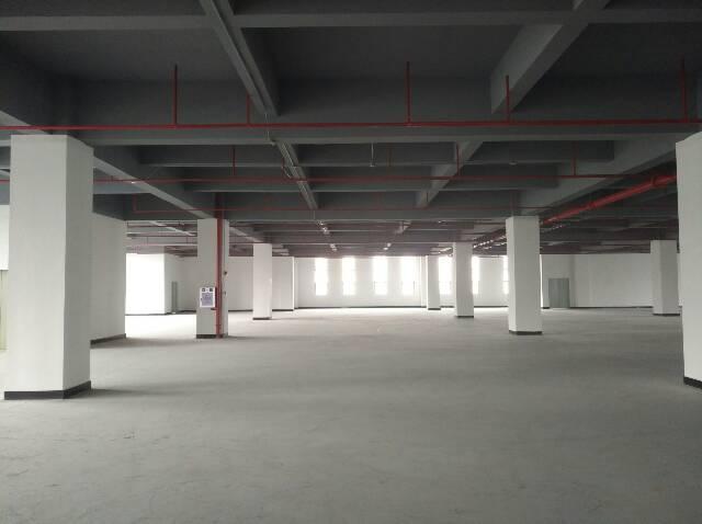 长安乌沙步步高订建厂房四楼3190招租