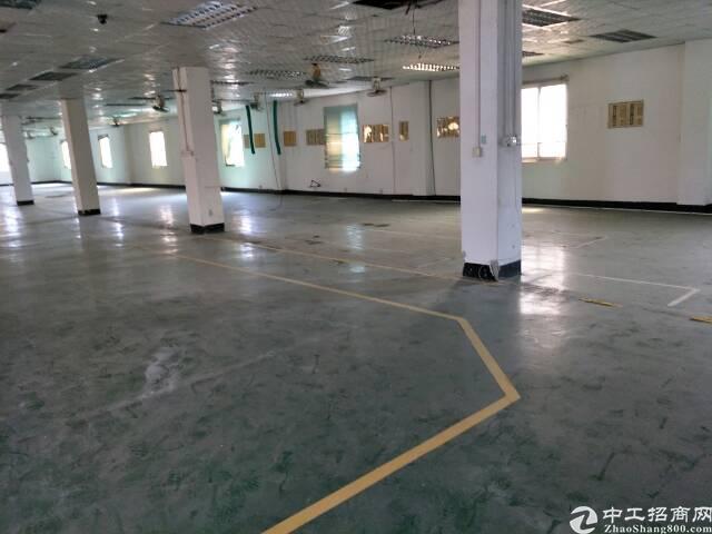 石湾镇新出原房东独院3层空地超大厂房招租-图2