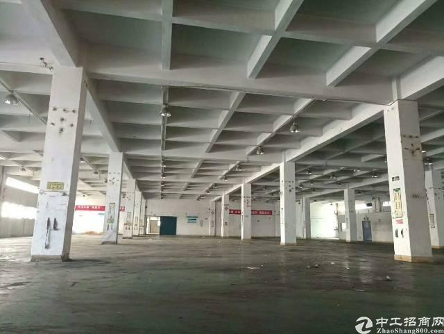 大岭山镇向东新出标准一楼厂房1700平方7米高低价出租