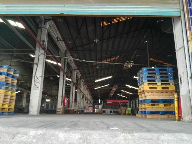 龙华清湖大型物流园带卸货平台,消防喷淋