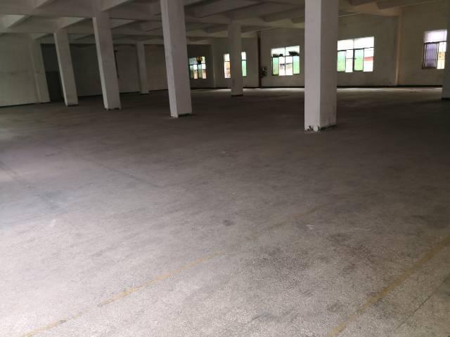 平湖良白路边新出原业主一二楼3700平方招租