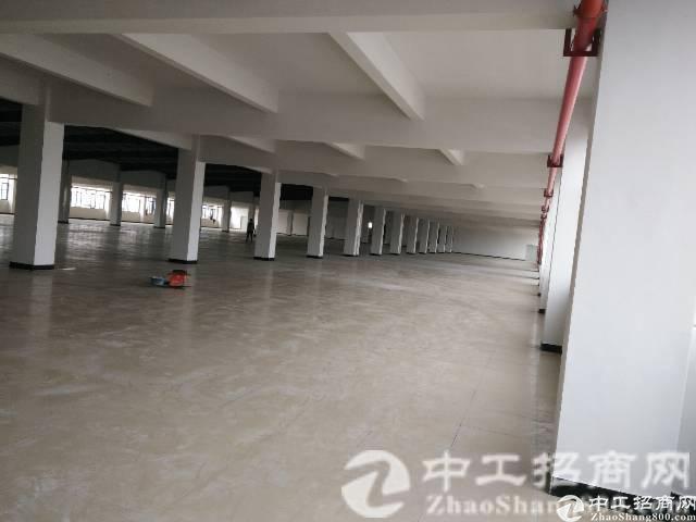 新出原房东独门独院10000平方厂房现成装修