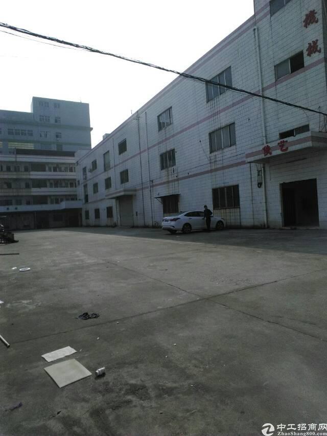 虎门新联标准独院厂房出租面积6500平租11元电400kva