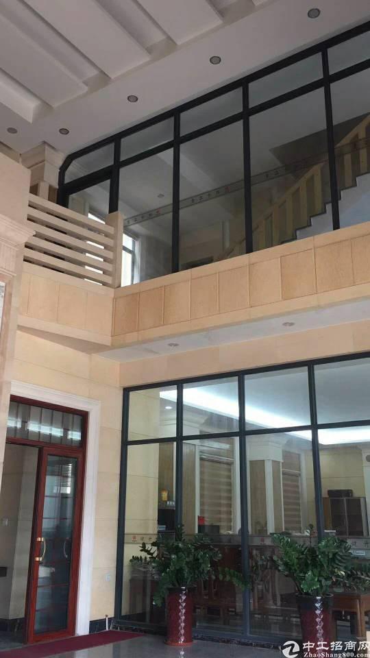 新塘新出独院单一层钢结构厂房