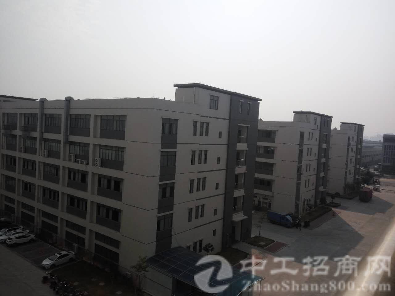茶山镇全新独院5500㎡,滴水高度10米,配电315kva,-图2