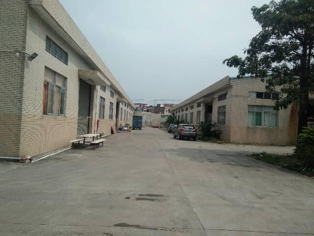原房东单一层独门独院厂房出租厂房3000平方米