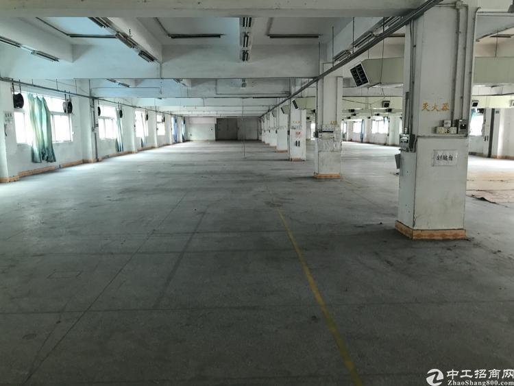 茶山南社独院厂房