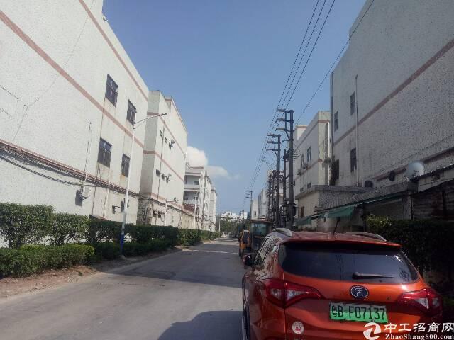 坪山新区6900平方红本独院厂房