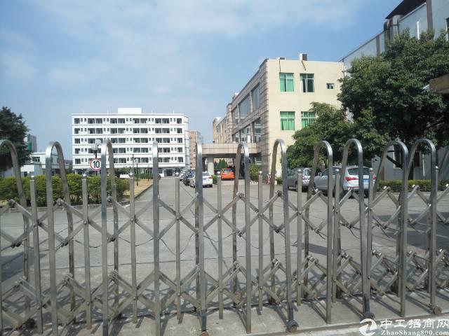 常平镇新出标准厂房19000平方,宿舍3000平方出租。