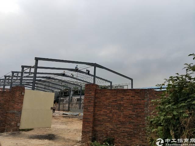 企石镇原房东独门独院单一层在建钢构出租