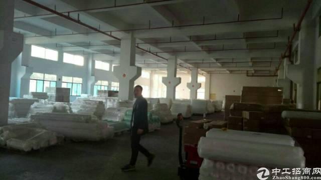 企石镇东部快线边上95成新独院标准厂房12500平方