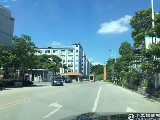 坂田上雪科技园原房东楼上800平方带装修招租