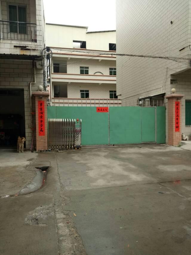 万江标准厂房独院2500平方出租