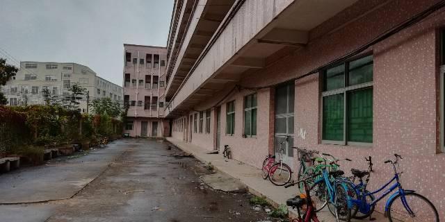 茶山整栋独立宿舍楼81间加一楼饭堂等可包租