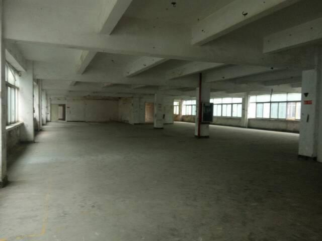 龙岗坪地新出5600平标准厂房