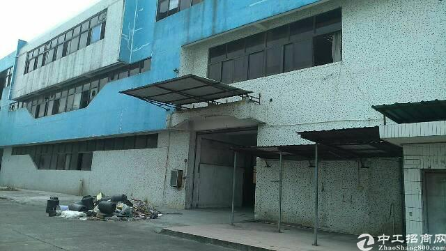 黄江独院厂房,适合各种行业