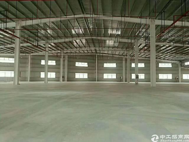 惠州 新圩原房东2300平方带喷油烤漆证件单一层钢构出租!-图4