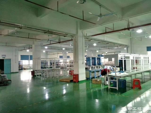 光明新出带装修厂房一整层3500平方出租-图7
