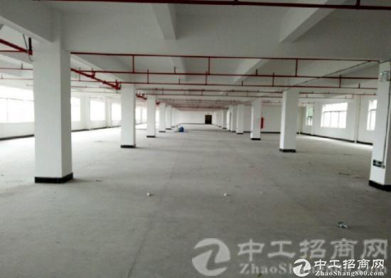 观澜桂花村楼上800平标准环境优美火爆招租
