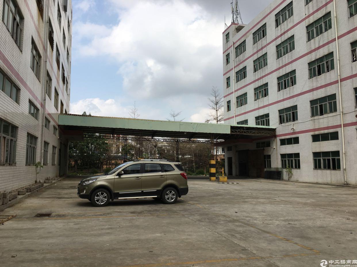 布吉百鸽笼地铁站2公里红本独院厂房9500平方两栋可分租