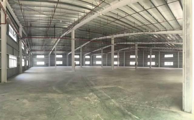 惠州 新圩原房东2300平方带喷油烤漆证件单一层钢构出租!