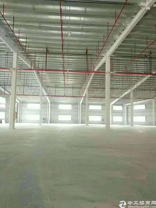 惠州 新圩原房东2300平方带喷油烤漆证件单一层钢构出租!-图2
