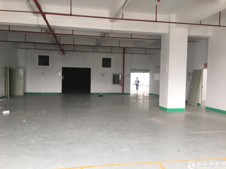 龙华大浪高新产业园单层6100平方厂房招租-图5