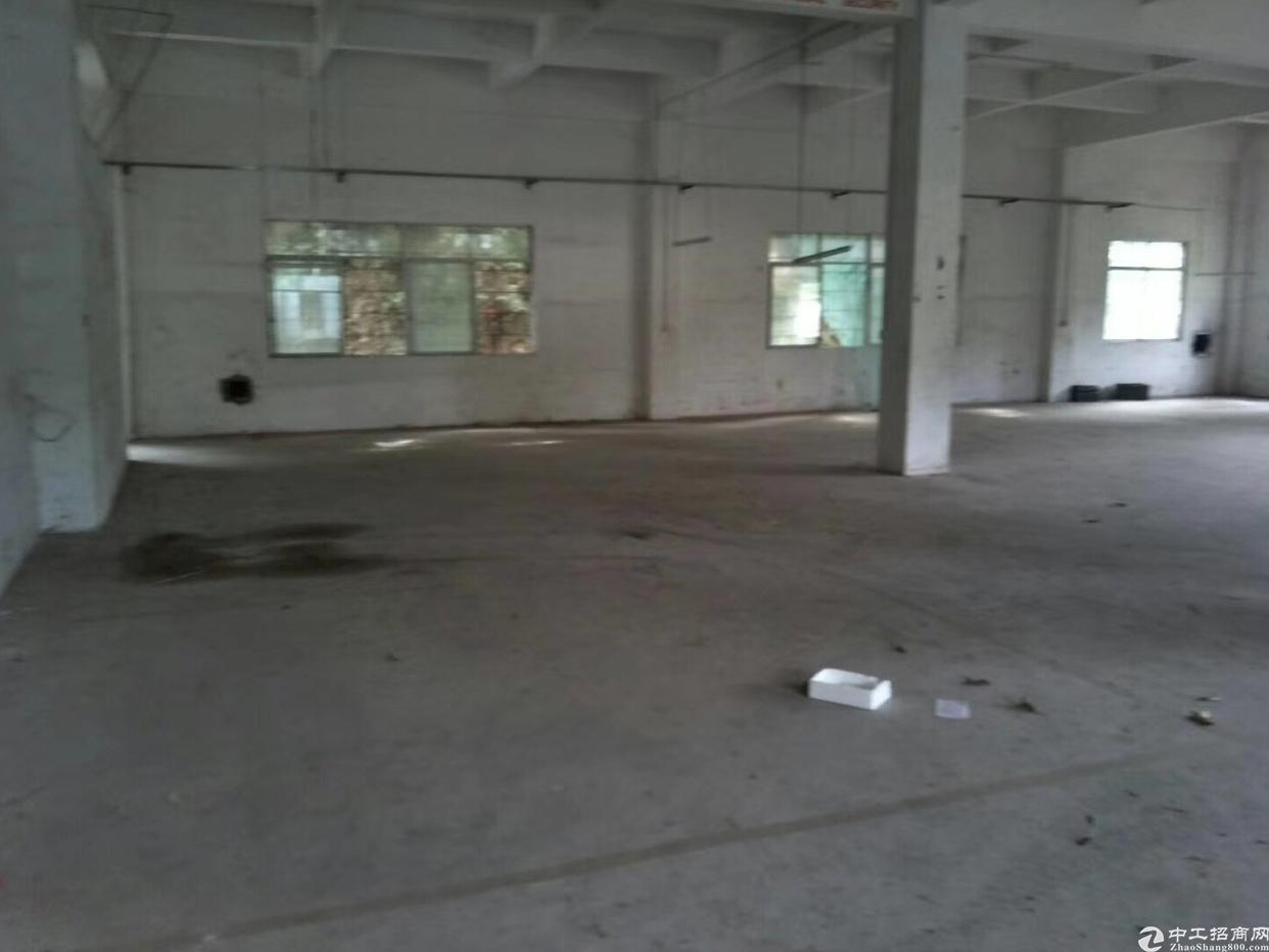 布吉丹竹头单层面积1150平厂房出租