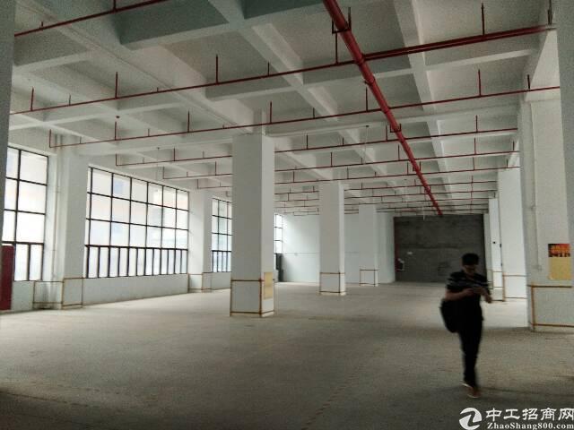 5500平厂房定建出租,符合各行业