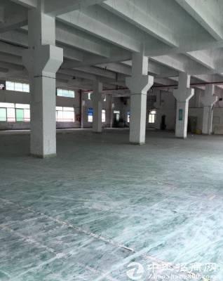 龙岗平湖广场地铁10号线旁一楼1600平方