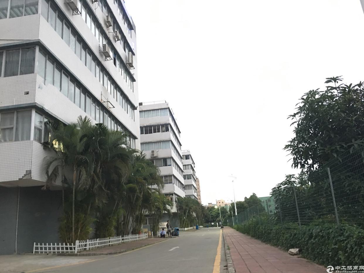 坂田地铁口八百米2-4-6楼每层1050平方大小分租